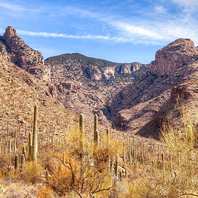 Finger Rock Canyon Around Hacienda Del Sol Guest Ranch Resort, Tucson