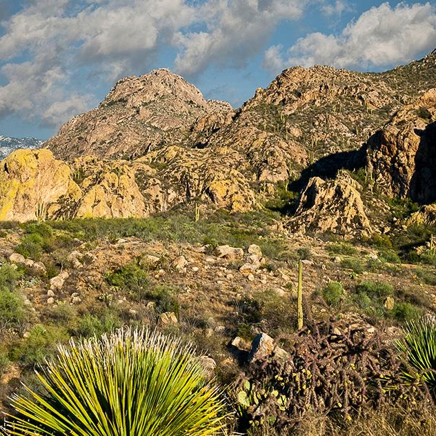 Intro of Explore Nearby at Hacienda Del Sol Guest Ranch Resort, Tucson